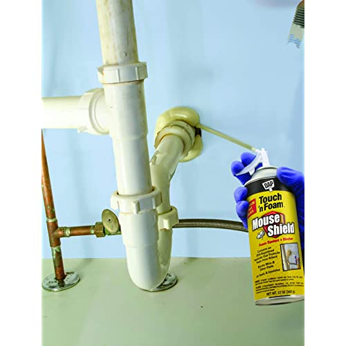 Buy DAP Products Inc  4001012506 12OZ Mouse Foam Sealant